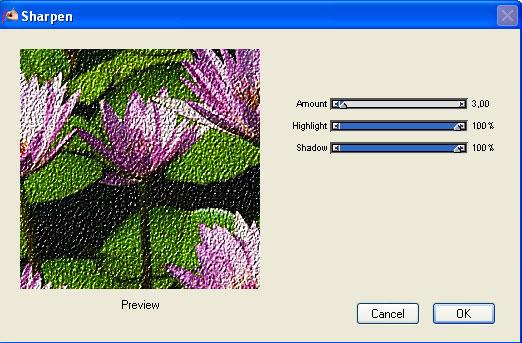 Corel Painter Essentials download