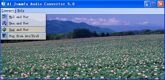 A1 Jummfa Audio Converter