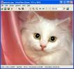 IrfanView Visualizzazione di una singola foto
