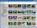 IrfanView Visualizzazione di un'intera directory