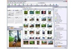 ACDSee Photo Manager Finestra di lavoro