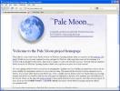 Pale Moon Finestra del programma